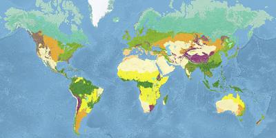 Ecosystems Worldwide